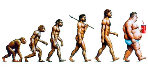 evolution-to-fat
